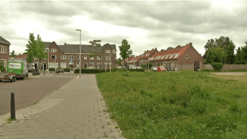 willaertplein